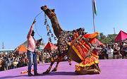 Explore the colourful land of Pushkar fair in Rajasthan